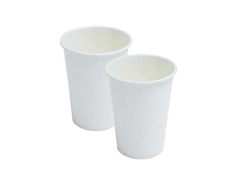 Paper White Cup