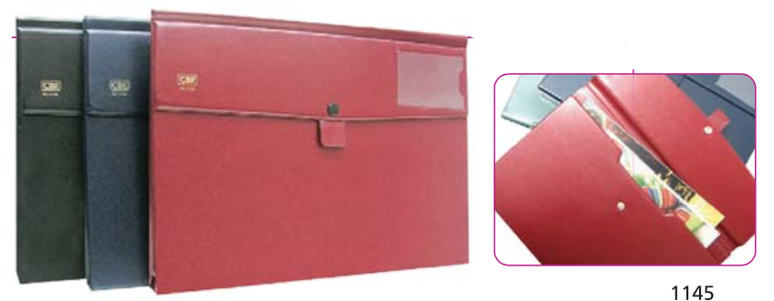 CBE PVC POCKET FILE